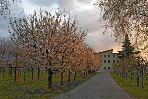 <en>nice buildings</en><fr>jolie bâtisse</fr><nl>mooie boerderijen</nl>
