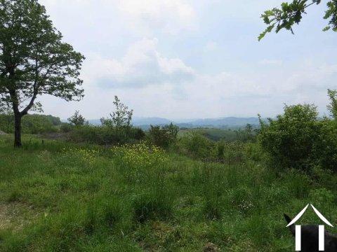Terrein, ideale plek voor weekendjes uit te rusten midden in de natuur Ref # MP8055